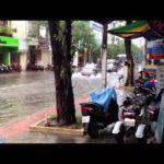 Высокие и низкие сезоны во Вьетнаме по месяцам когда лучше отдыхать